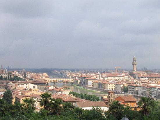 Hotel Etrusca: View of Florence from Piazelle Michelangelo