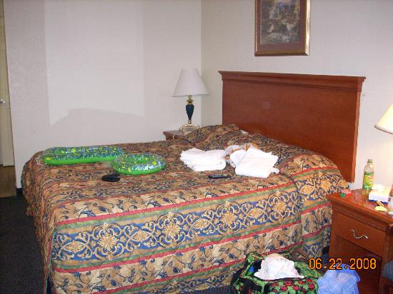 Econo Lodge: King Bed Room