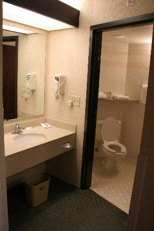 Drury Inn &amp; Suites Denver Tech Center: ensuite bathroom