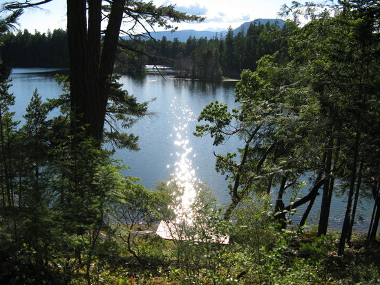 Кваликум-Бич, Канада: View of Spider Lake from Rainshadow B & B