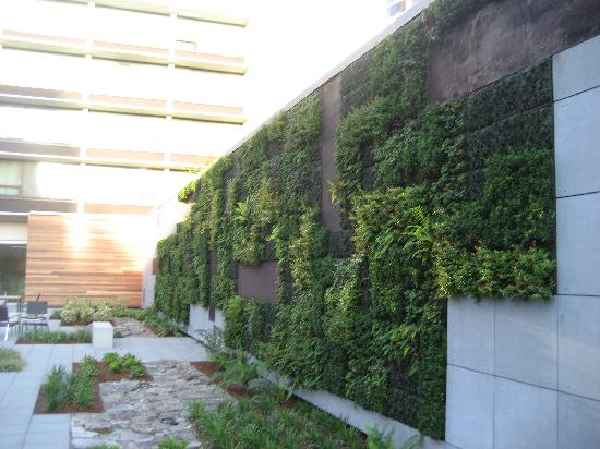 "hotel modera - courtyard and ""living"" wall"