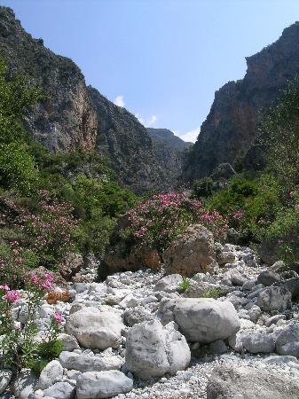Kardamili, Greece: Viros gorge