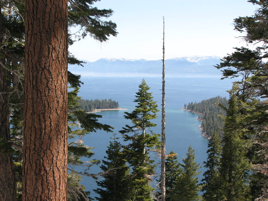 Tahoe City, CA: beautiful view on south side of the lake