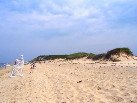 North Of Highland Camping Area: The beach (walking distance from site)