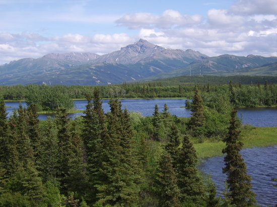 Healy, AK: This is the view!