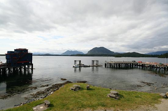 Tofino Beach Homes: Tofino Harbor daytime view from our unit