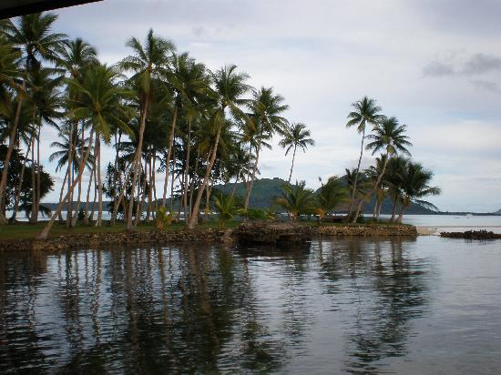 The palm trees on Weno, with Dublon in the background - Courtesy of media-cdn.tripadvisor.com