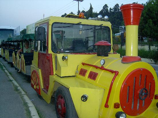 Kriopigi Beach Hotel: Train