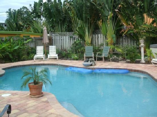 Bungalow Six Guest House : Awesome warm salt water pool