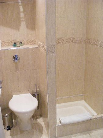 301 moved permanently - Shower suites for small spaces photos ...