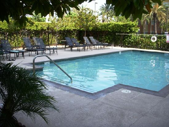 Hilton Garden Inn Anaheim/Garden Grove: The pool - view looking out from hotel.