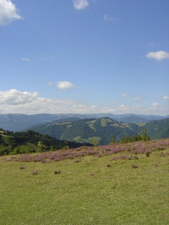 Bosnia e Erzegovina: countryside, bosnia