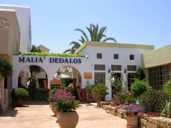 Photo of Malia Dedalos Hotel Crete
