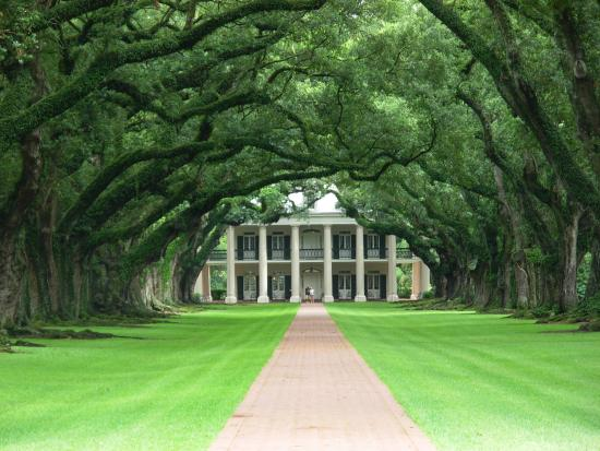 Photo of Oak Alley Plantation, Restaurant & Inn Vacherie