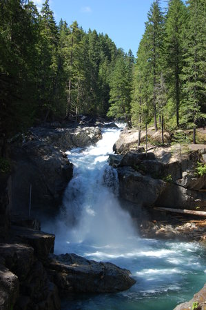 Ashford, WA: Silver Falls, which we would NEVER have found without Jasmer&#39;s guide!