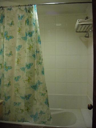 Mimosa Hotel: Shower and bathtub, 2-in-1.