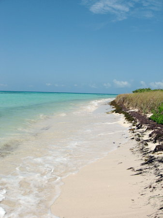 Photos of Bahia Honda State Park and Beach, Big Pine Key