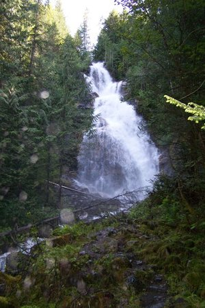 Revelstoke, Kanada: One of the many local sights to see - speak to the owners to learn about these.
