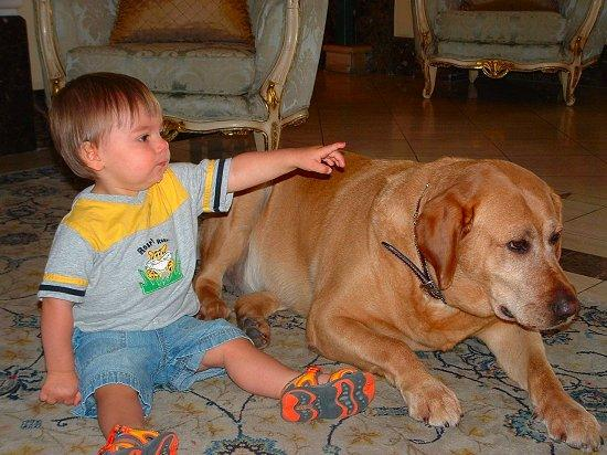 The Fairmount: Luke the Pet Relations Director and my son