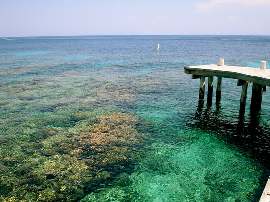 Utila, Honduras: The view off Utopia's dock