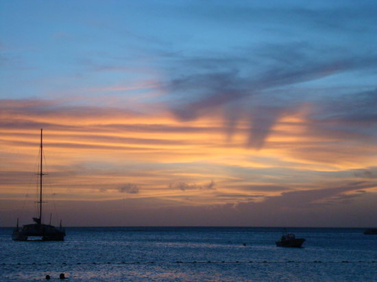 Palm - Eagle Beach, Aruba: Sunset