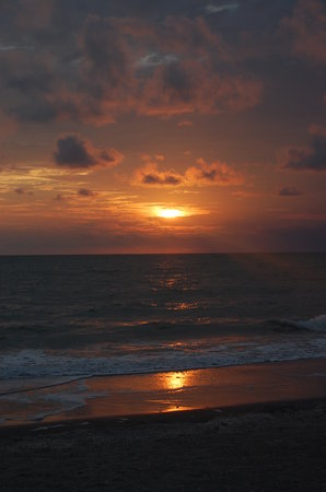 isla de Captiva, FL: sunset