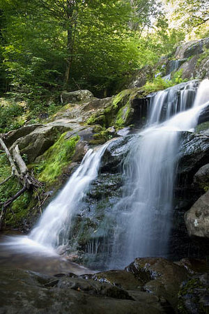 Shenandoah National Park, เวอร์จิเนีย: Waterfall at mini hike near Big Meadows