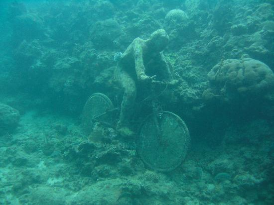 Cyclist Lost Picture Of Underwater Sculptures St George S Tripadvisor