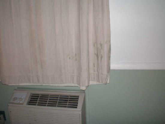 Four Winds Motel: the curtains