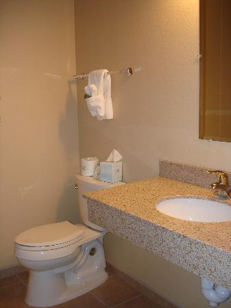 Alpine Lodge: clean bathroom