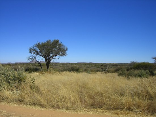 Windhoek, Namibia: Namibian scenery