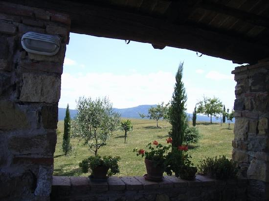 Podere Pagliaore: View from the terrasse