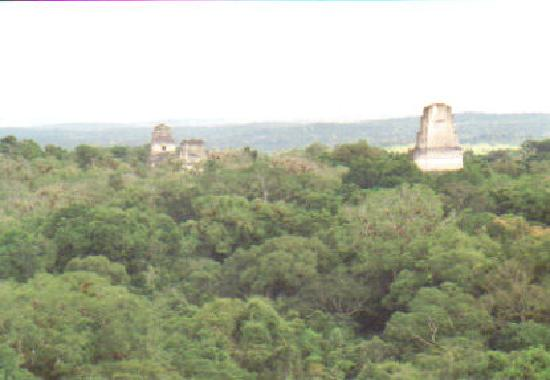 Tikal Guatemala Star Wars Star Wars Photo at Tikal