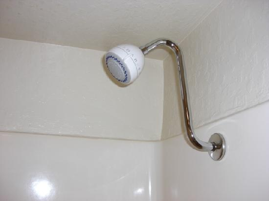 BEST WESTERN Cordelia Inn: nice shower head