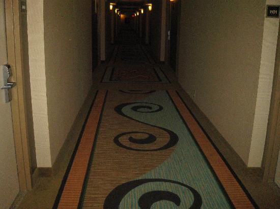 Comfort Inn Bloomington: Hallway