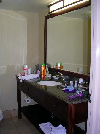 Hampton Inn Fishkill: Bathroom Vanity