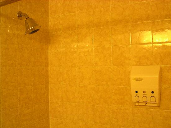 BEST WESTERN Invermere Inn: Shower / bath
