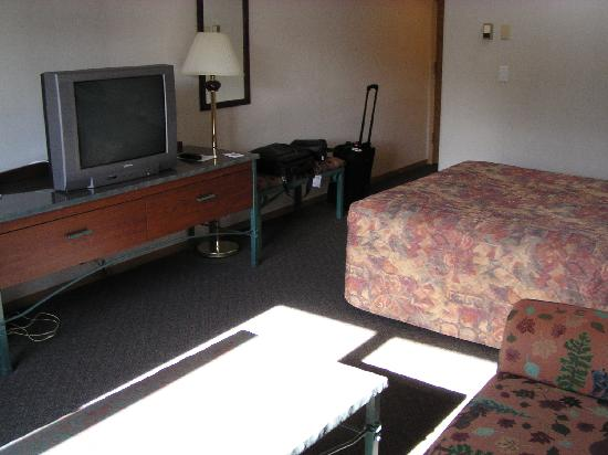 BEST WESTERN Invermere Inn: Nice sized TV