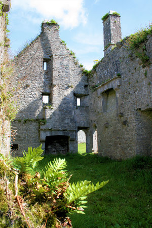 Adare, Irland: Friary interior