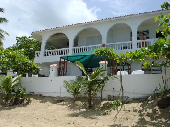 Coconut Palms Inn: back view