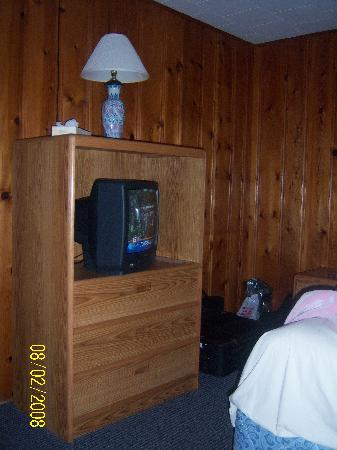Dell Creek Motel: TV area