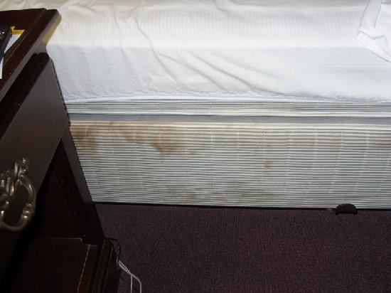 Days Inn Harrison: Stains on boxsprings