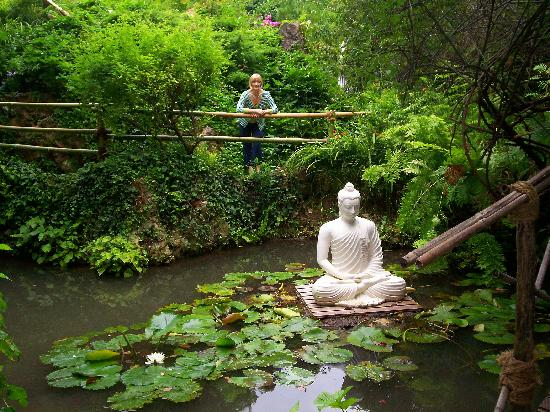 buddhist single women in pleasant garden Mr suresh from india  we have undertaken this tour on 7th march 2015 as it was the first time that me & my wife were traveling with them, we were a little.