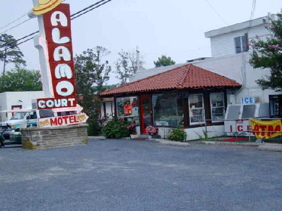 alamo motel ocean city md motel reviews tripadvisor