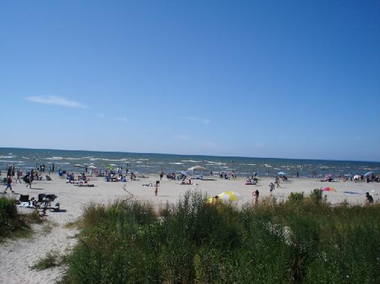 wasaga beach buddhist dating site Wasaga beach just minutes away from blue mountain ski resort in collingwood and just a stones throw from your home enjoy the year round tourist attractions and the relaxing atmosphere of villas of upper wasaga visit our sales office at 26 wasaga sands drive at wasaga sands drive and 45th street.