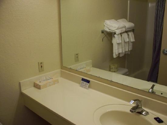 Extended Stay America - Roanoke - Airport: Bathroom works for me, but bring your own shampoo