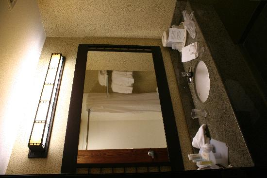 Holiday Inn Express Hotel & Suites Washington: Bathroom