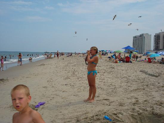 Beach Picture Of Virginia Beach Virginia Tripadvisor