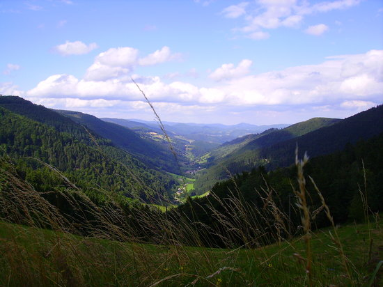 Above Gerardmer there are some of the best biking roads known to man.