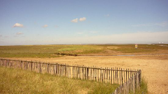 Skegness, UK: Donna Nook beach